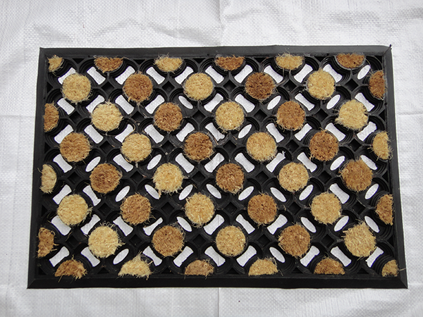 COIR PASTED MATS